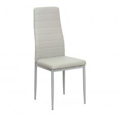 Židle, ekokůže šedá/kov stříbrná, COLETA NOVA